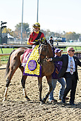 3rd November, 2018, Churchill Downs, Louisville, Kentucky, USA; Shamrock Rose with Irad Ortiz jr up and trainer Mark E. Casse after winning the Breeders Cup Filly and Mare Sprint. Churchill Downs racecourse.