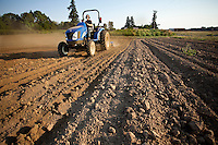 Farmer liming the soil with New Holland tractor, in a fresh tilled field, Viridian Farms, Oregon