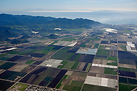 aerial photograph agriculture in Ventura County, California