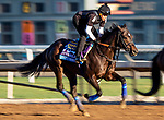 OCT 24: Breeders' Cup Juvenile  entrant Eight Rings, trained by Bob Baffert, gallops with Humberto Gomez at Santa Anita Park in Arcadia, California on Oct 24, 2019. Evers/Eclipse Sportswire/Breeders' Cup