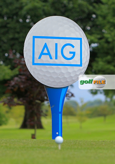 Big and small golf balls during AIG Jimmy Bruen Shield Semi-Finals of the AIG Connacht Cups &amp; Shields Finals 2016 at Ballinrobe Golf Club, Ballinrobe Co. Mayo on Friday 5th August 2016.<br /> Picture:  Golffile | Thos Caffrey<br /> <br /> All photos usage must carry mandatory copyright credit   (&copy; Golffile | Thos Caffrey)