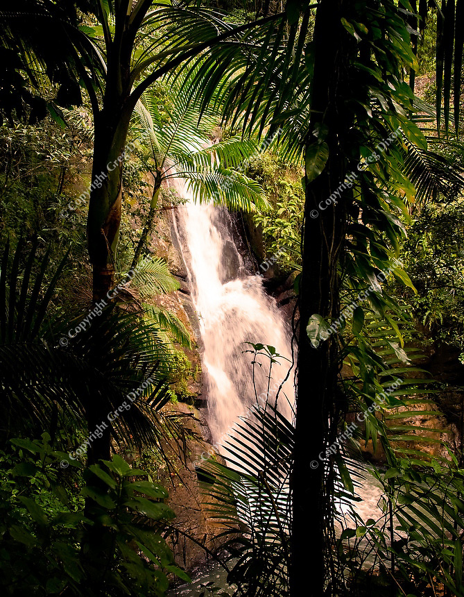 El Yunque Rain Forest waterfall ends in a shallow pool, where hikers can cool off before returning to the hiking path, seen here on Feb. 7, 2012