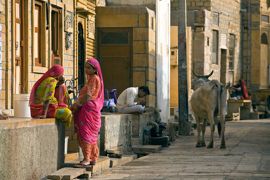 HINDU WOMEN and a sacred cow in front of their SANDSTONE homes in JAISALMER - RAJASTHAN, INDIA