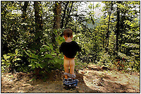 A young boy takes a bathroom break in the woods.  Model released image can be used to illustrate many purposes.