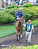Gamay Noir before The Obeah Stakes (gr 3) at Delaware Park racetrack on 6/14/14