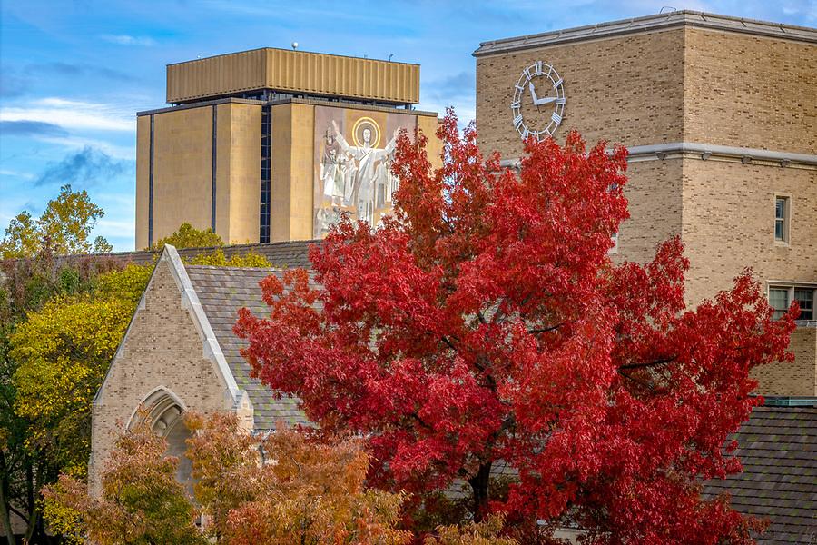 November 2, 2018; O'Shaughnessy Tower and Hesburgh Library (Photo by Matt Cashore)