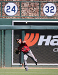 Arizona Diamondbacks' Reymond Fuentes makes a play against the Los Angeles Dodgers in a spring training game in Glendale, Ariz., on Friday, March 24, 2017.<br /> Photo by Cathleen Allison/Nevada Photo Source