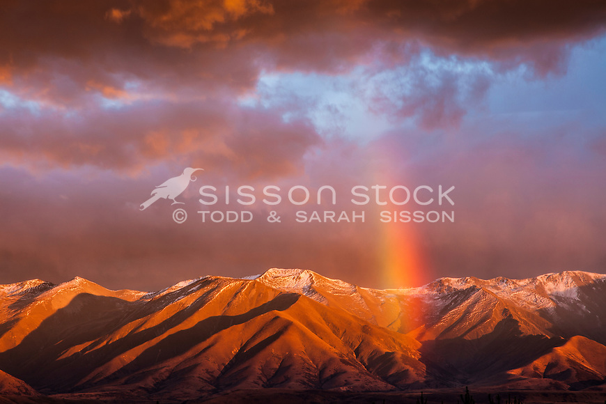 Intense rainbow &  red sunrise colour, over Ben Ohau range, Mackenzie basin NZ.