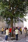 Uzes danse à l'école à partir du spectacle Postural : Etudes<br /> <br /> Conception : Fabrice ramalingom<br /> cadre : festival Uzes danse 2014<br /> Ville : Uzes<br /> Date : 13/06/2014
