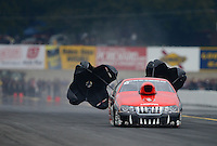 Oct. 6, 2012; Mohnton, PA, USA: NHRA pro stock driver V. Gaines during qualifying for the Auto Plus Nationals at Maple Grove Raceway. Mandatory Credit: Mark J. Rebilas-