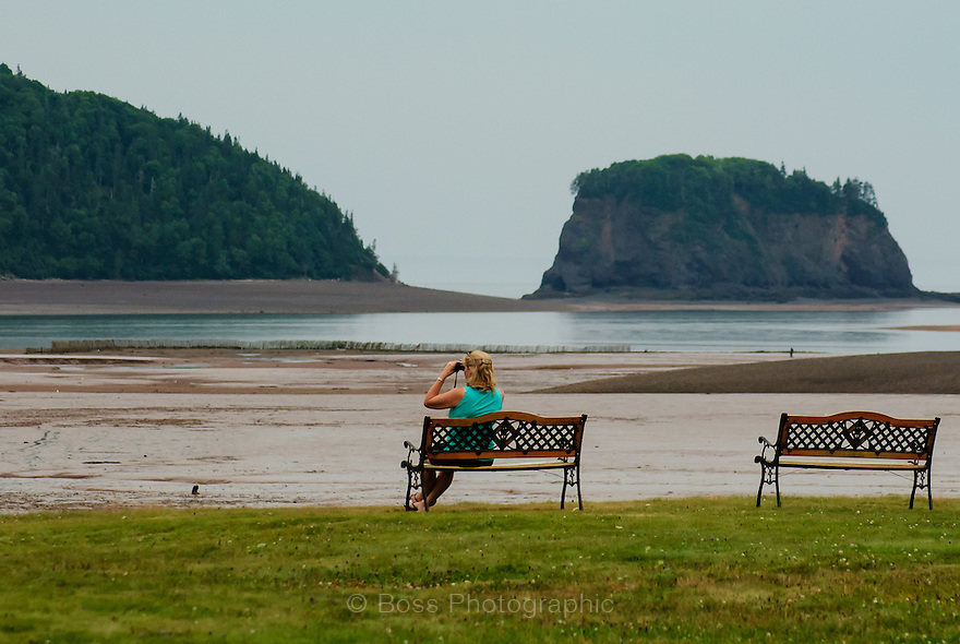 Woman sitting on a bench using binoculars to watch an eagle on the beach, Five Islands, Nova Scotia