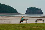 Woman sitting on a bench using binoculars to watch an eagle on the beach, Five Islands, Nova Scotia