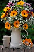Carl, FLOWERS, photos, SWLA12027,#f# Blumen, Natur, flores, naturaleza