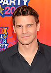 SANTA MONICA, CA. - August 02: David Boreanaz arrives at the FOX 2010 Summer TCA All-Star Party at Pacific Park - Santa Monica Pier on August 2, 2010 in Santa Monica, California.