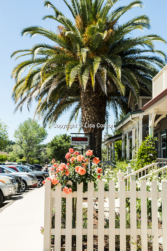 Barbieri Wine tasting room in Los Olivos, California.