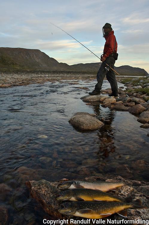 Mann med fangst av røye på Grønland ---- Char and angler, Greenland