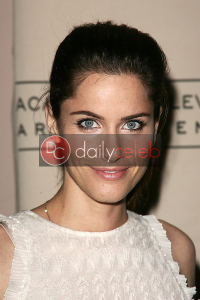 Amanda Peet<br />at &quot;An Evening With Studio 60 on the Sunset Strip&quot;. Leonard H. Goldenson Theater. North Hollywood, CA. 09-25-06<br />Dave Edwards/DailyCeleb.com 818-249-4998