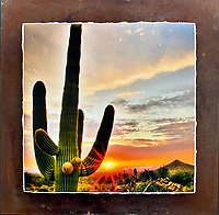 """Sonoran Sunset - Mixed Media - Arizona<br /> <br /> Each unique piece is made to order. If I have the piece in stock I can ship it in 2-3 days. If I don't have it in stock and it has to be made, it will ship in 1-2 weeks. Feel free to contact me at chey.rouse@gmail.com before you order if you need the piece ASAP. <br /> <br /> The photograph is printed on a Silk photo paper, the edges of the photo are torn, photo is mounted to foam board, then I mount it to an 8""""x8"""" piece of rusted metal. The rust is unique on each piece...no two pieces are alike. PLEASE keep in mind that the rust on the piece(s) you receive may be slightly different than the photo. Each piece of metal is sealed after it is done """"rusting"""" and is titled, hand signed and, ready to hang. To see the detail for theses Mixed Media pieces please click on the 1st photo in this gallery. You will be able to see the detail of the torn paper edge as well as the back of the piece."""