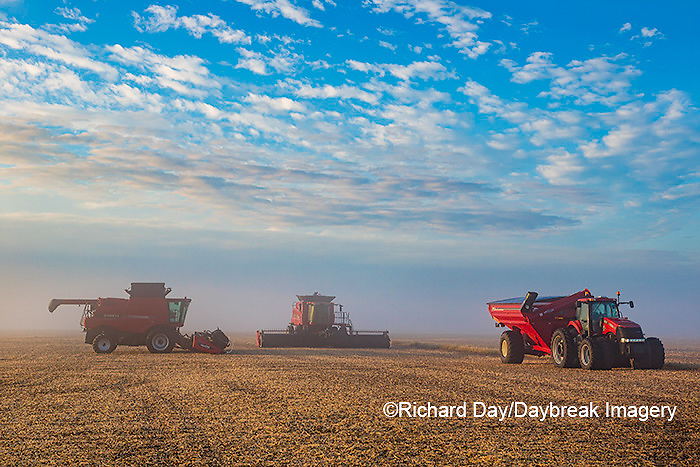 63801-08017 Case IH combines and tractor in field on foggy morning Marion Co. IL