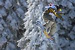 Snow Board Sport winter sports Kopaonik Ski Resort Big Air Slope Style 18.2.2007. photo: Pedja Milosavljevic