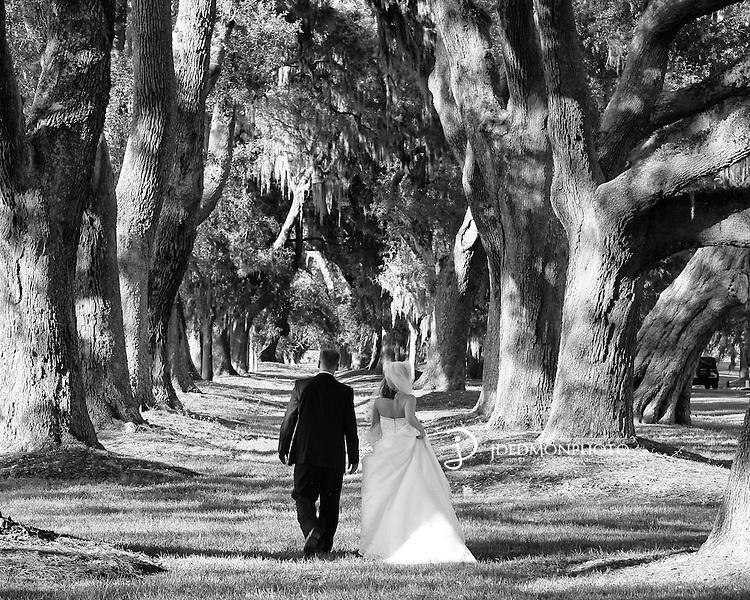 Shawn and Stephanie Wedding