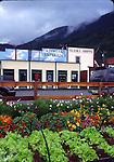Garden in Skagway