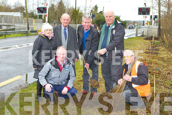 Richard Sherwood and John McLoughlin from the Tree Council of Ireland at the tree planting ceremony by Farranfore Tidy Towns for the National Tree week on Tuesday l-r: Noel Lane The Forestry Company, John O'Donoghue Farran fore Tidy towns. Back row: Margaret Kelly Residents Association, Terence O'Connell Tree Council of Ireland, Richard Sherwood Chairman Farranfore Development Association, and John McLoughlin Tree COuncil of Ireland