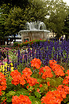 Flowers and fountain in Victoria Square, Christchurch, New Zealand