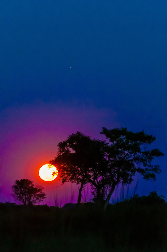 Moonrise, near Kwara Camp, Okavango Delta, Botswana.