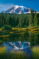 Mt. Rainier from Reflection Lakes<br />
