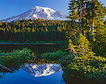 Mt. Rainier National Park, WA     <br /> Morning light on the summit of Mount Rainier with reflection on the calm surface of Reflection Lake