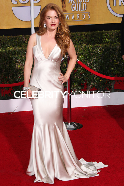 LOS ANGELES, CA - JANUARY 18: Isla Fisher at the 20th Annual Screen Actors Guild Awards held at The Shrine Auditorium on January 18, 2014 in Los Angeles, California. (Photo by Xavier Collin/Celebrity Monitor)
