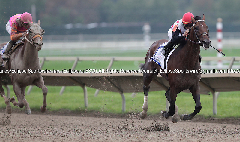To Honor and Serve wins the Pennsylvania Derby by 2 1/4 lengths over runner-up Ruler On Ice (left) at  Parx Racing in Bensalem, PA, September 24, 2011.  Jockey is Jose Lezcano, trainer is Bill Mott, owner is Live Oak Plantation.  (Joan Fairman Kanes/Eclipse Sportswire)