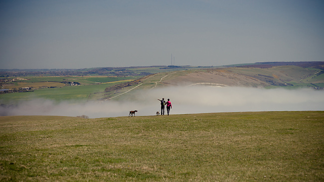 Dog Walking with Fog on the downs in the West Wight