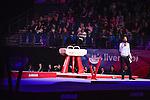 British Senior Gymnastics Championships 2016. Liverpool Echo Arena.
