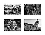 A photographic composite of organic farming at Keith's Farm in Port Jervis, New York