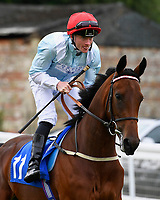 Ravens Song ridden by William Carson goes down to the start during Ladies Evening Racing at Salisbury Racecourse on 15th July 2017