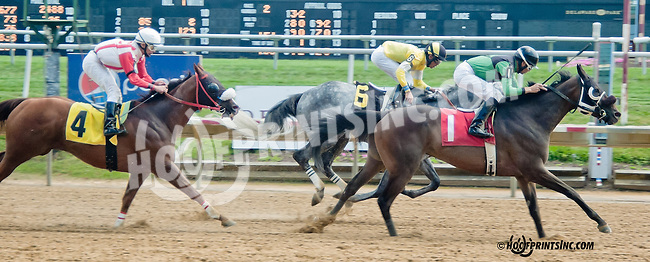 Gotta Go Gold winning at Delaware Park on 8/24/2013
