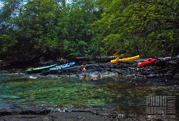 Kayakers going for a snorkel at Kealakekua bay, south of Kona, Big island of Hawaii As of 2013 a moratorium halting all kaying in the bay has been issued by the Dept. of Land and Natural Resources. This could be revoked at anytime.