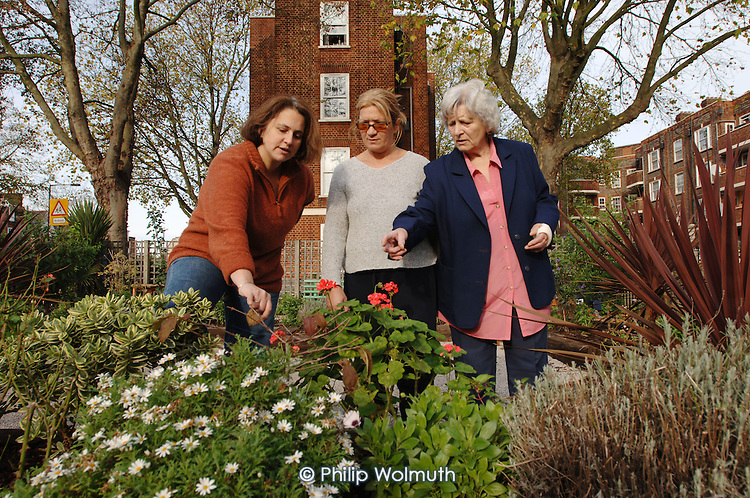 Elisa Puentes, Freda Gage and Mimi Sansone, in the garden they created in Torriano Estate, Camden Town, London.