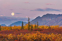 Moonrise over the Alaska Range mountains, Interior, Alaska.