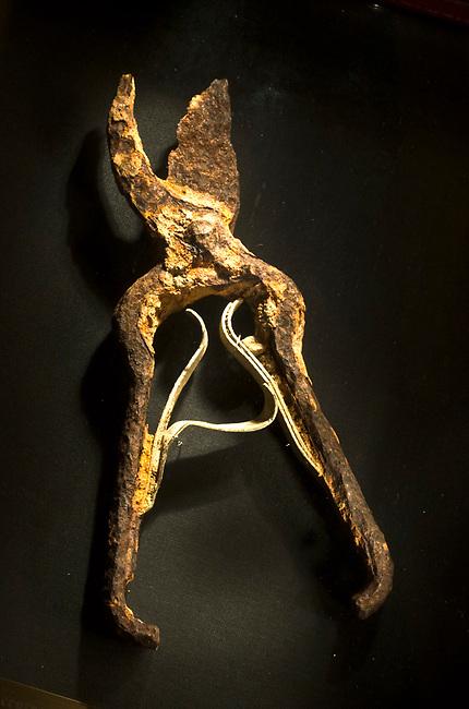 Picking shears found of William Cole (Ballentine) vineyard