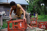 A volunteer, Taichi Mizutani, washes crates at Brown's Field, Isumi, Chiba Prefecture, Japan, August 9, 2009.The organic farm introduces healthy and sustainable living in the Japanese countryside. It is staffed by the Brown family and volunteers from around the world.