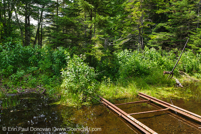 A harp switch stand along an abandoned spur line of the East Branch & Lincoln Railroad deep in the Pemigewasset Wilderness of Lincoln, New Hampshire. This was a logging railroad in operation from 1893-1948, and this spur line was located along the North Fork Branch of the railroad.