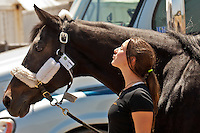 Performer Tatiana Daviaud welcomes Lorenzo, her Warmblood horse, with a kiss on the neck as he arrives at Cavalia's White Big Top in San Jose on July 13, 2012.