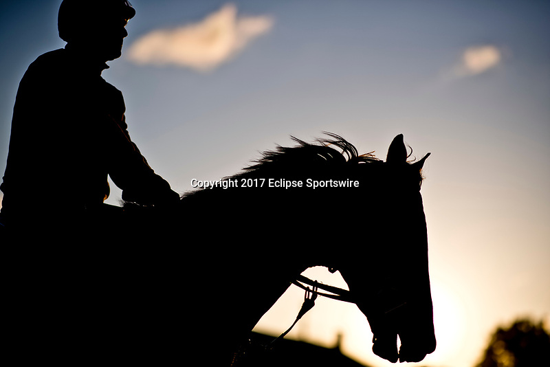 LOUISVILLE, KENTUCKY - MAY 02: A horse heads to the track to exercise during Kentucky Derby and Oaks preparations at Churchill Downs on May 2, 2017 in Louisville, Kentucky. (Photo by Scott Serio/Eclipse Sportswire/Getty Images)