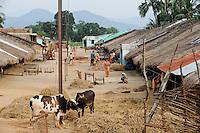 INDIA Odisha Orissa, Raygada, tribal village Kodesu, Dongria Kondh tribe / INDIEN Odisha Orissa, Raygada, Dorf Kodesu, Ureinwohner Dongria Kondh