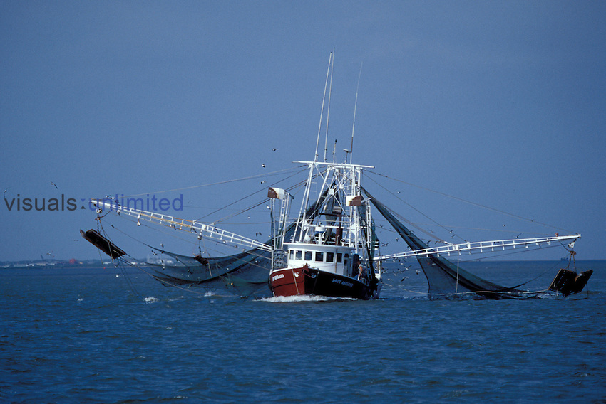 Shrimp boat, Gulf of Mexico - LM