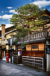 Traditional tea house with a beautuful pine tree above the store front at Hanamikoji Dori street in Gion district in morning sunrise. Hanami-koji, Gionmachi Minamigawa, Higashiyama Ward, Kyoto, Japan 2017.