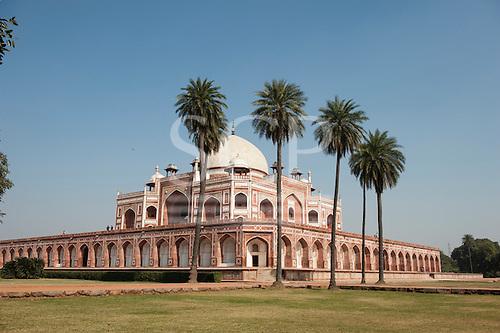 Delhi, India. Tomb of Emperor Humayun. Palm trees.